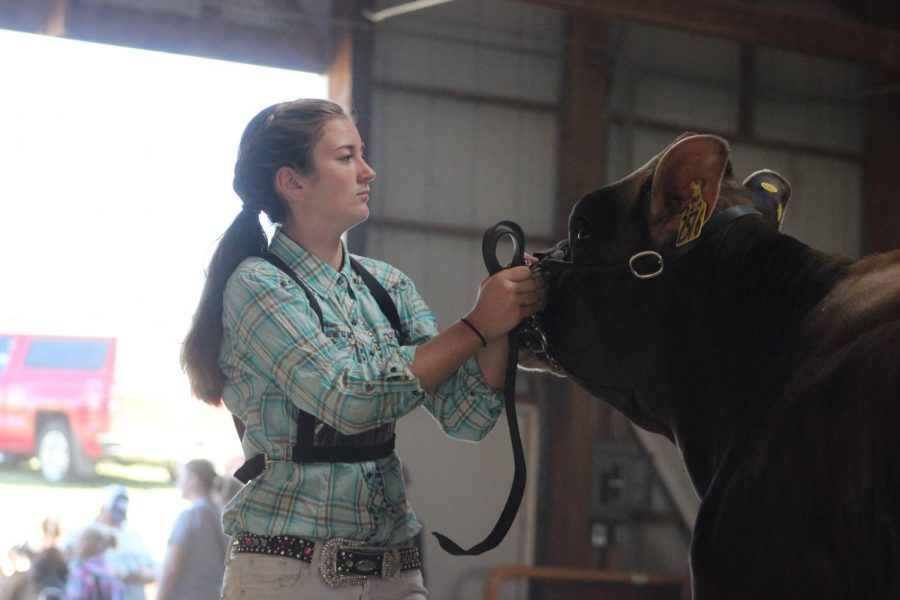 Izzy Dannenberg during the Friday morning Dairy show