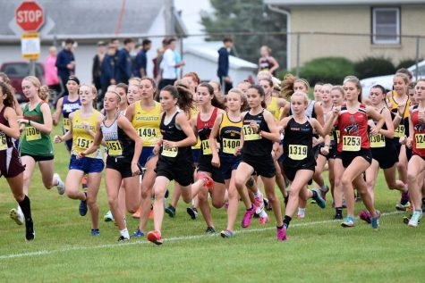 Dodge Point Cross Country Secures Another Astounding Win